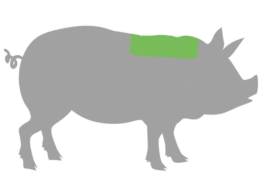 Landschwein