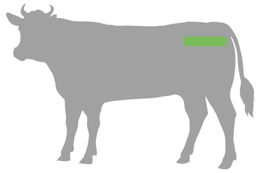 Rinder Hüft Filet Beef Cut