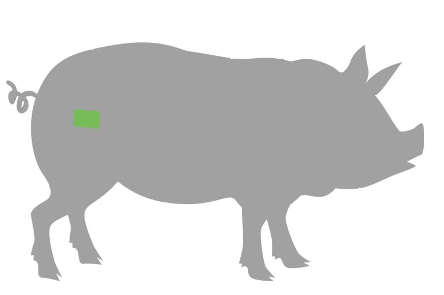 Kachelfleisch cut